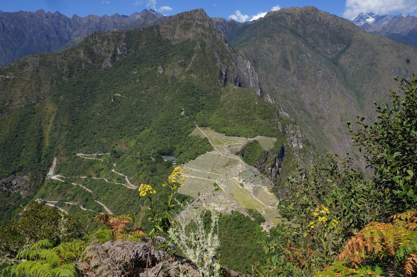 Machu-Picchu from Huayna picchu