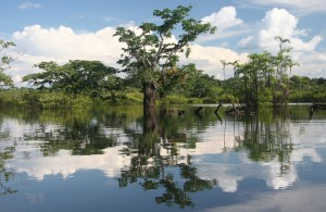 Cuyabeno-River-Amazon