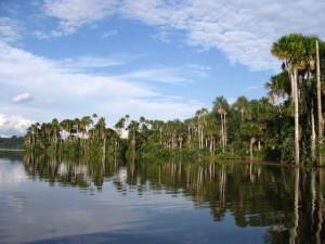 sandoval-lake-puerto-maldonado-
